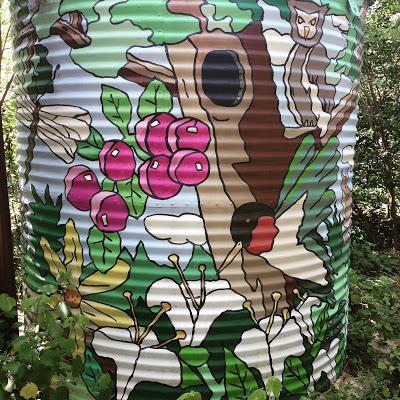 Explore the Houston Arboretum and Nature Center
