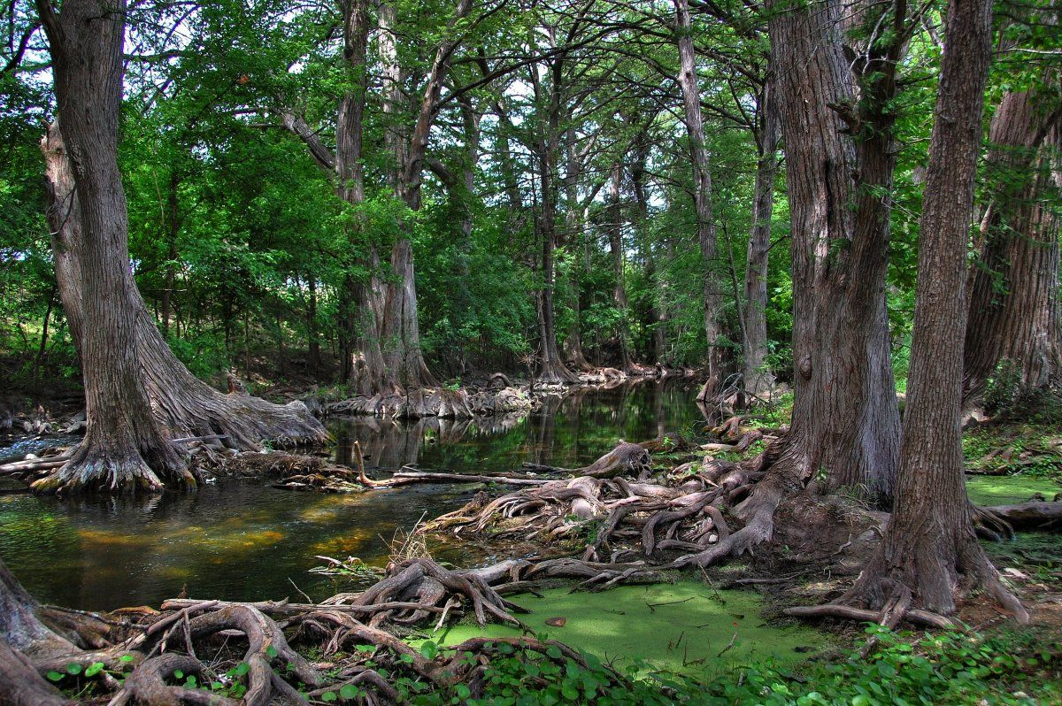 Read more about the article Hill Country Getaways