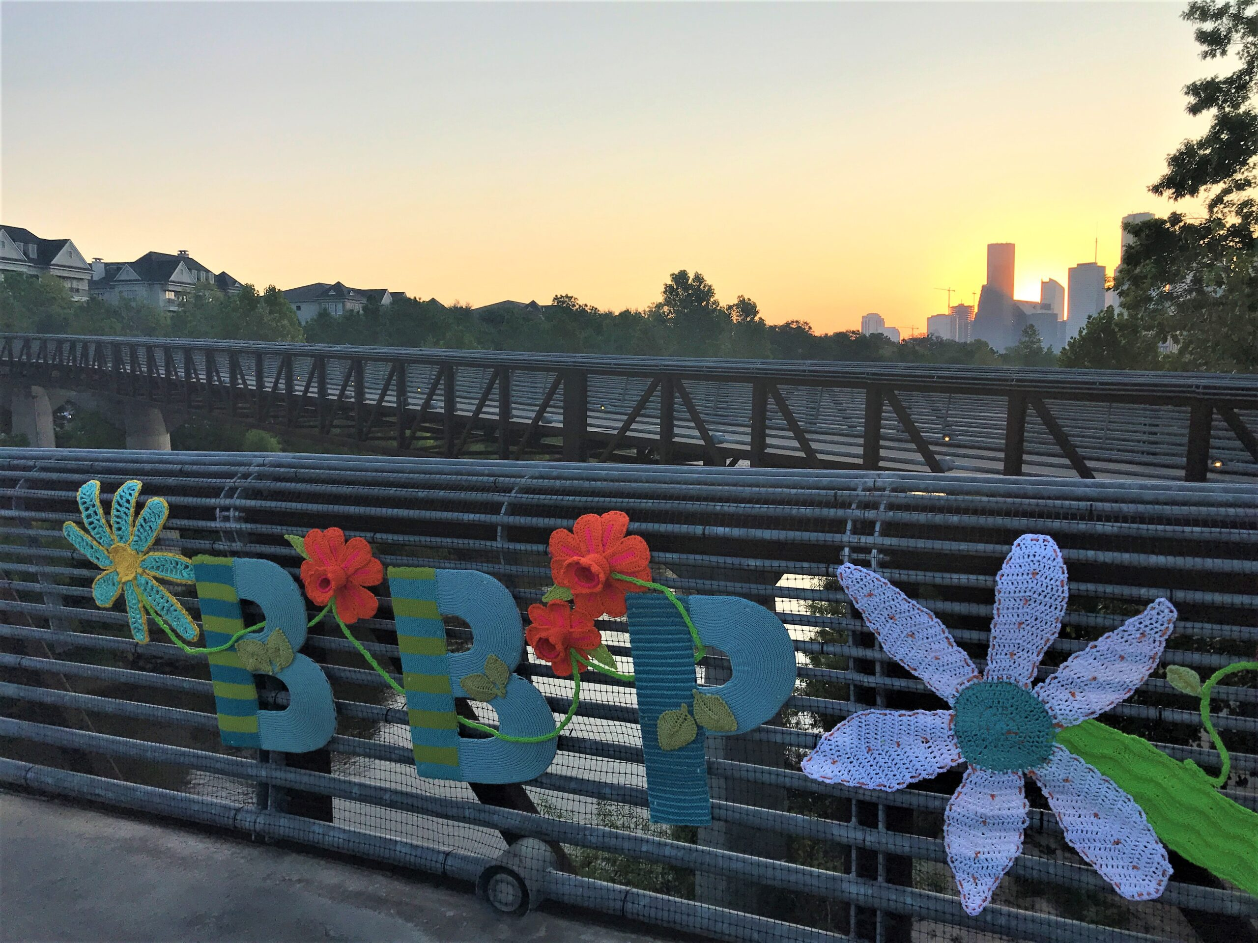 Read more about the article Buffalo Bayou Park's Big Five!